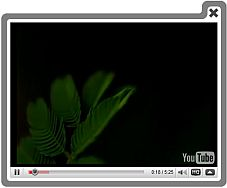 Youtube Video Presentatie Op Website Programa Similar A Video Lightbox