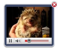 Easy Video Gallery Programa Similar A Video Lightbox